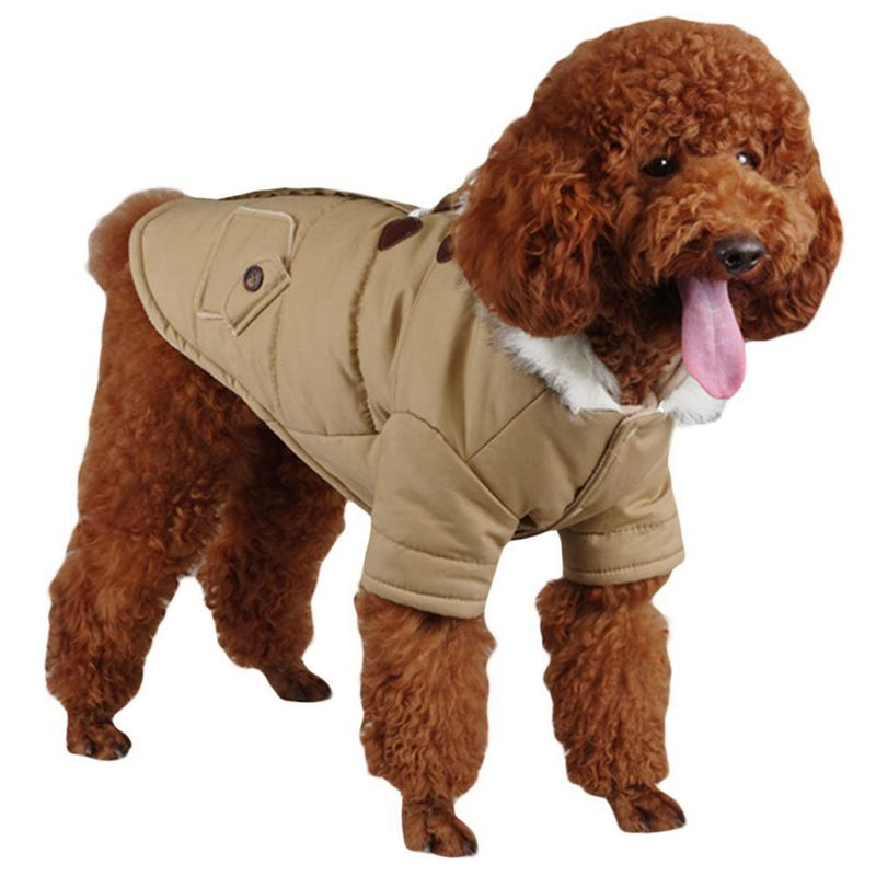 brigo-con-capucha-Mini-chaqueta-de-perro-linda-Traje-de-algodon-Teddy-Inform-PB miniatura 11