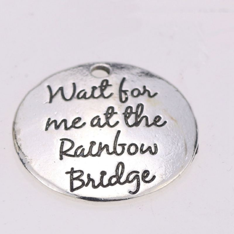 "10X /""Wait for me at the Rainbow bridge/"" DIY Antique Message Charms Pendant N2X7"