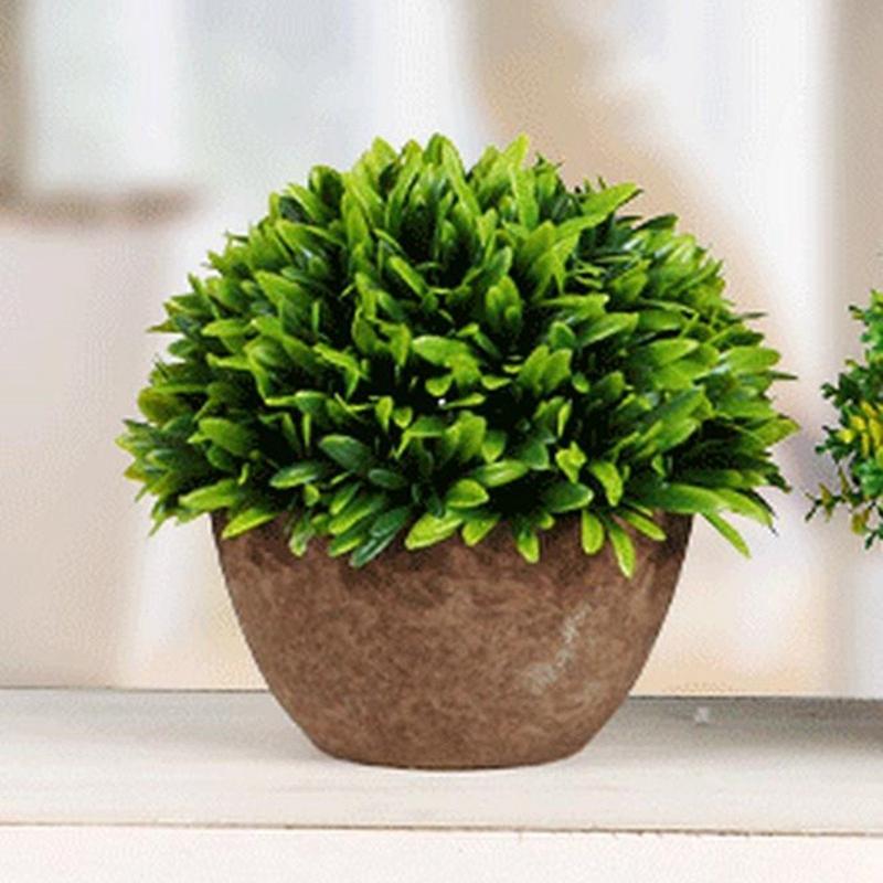 Kunststoff-gefaelschte-kuenstliche-Sukkulenten-Blumentopf-gruenes-Gras-Deko-X9T6 Indexbild 7