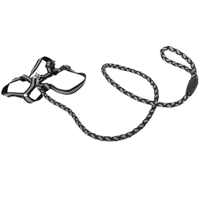 Collier-et-laisse-de-chien-reflechissants-fort-de-securite-de-nuit-Ceinture-J7G3 miniature 22