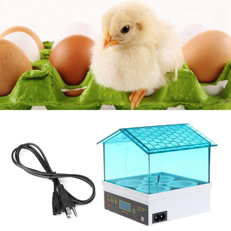 Temperature Numerique Petite Eleveuse 4 Mini Pains Incubateur D'oeufs Pour B2v9 Carefully Selected Materials Other Bird Supplies