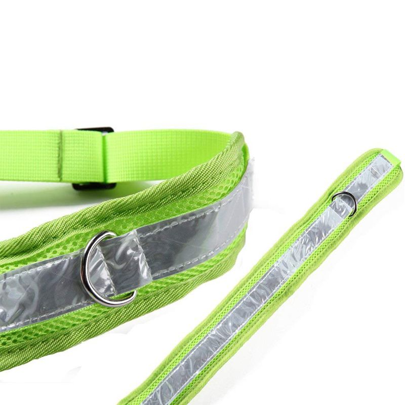 2X-Ceinture-elastique-en-nylon-sangle-corde-laisse-pour-chien-Pour-marcher-C-G9 miniature 9