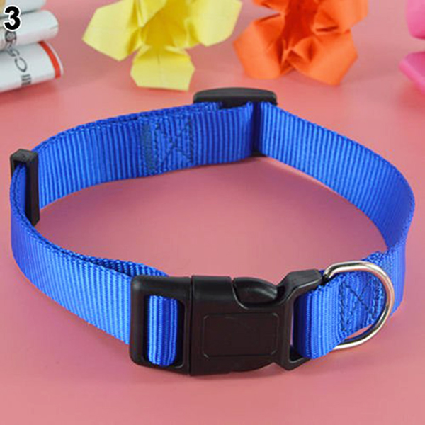 Adjustable-Nylon-Dog-Puppy-Collar-with-Buckle-and-Clip-for-Lead-M2V1M2V1 縮圖 15