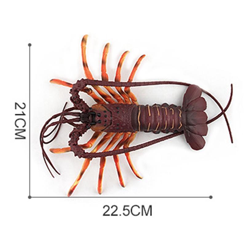 1X-Solido-Realista-Mundo-Submarino-Animales-Modelos-Realistas-De-Talla-Extr-U4Y7 miniatura 20