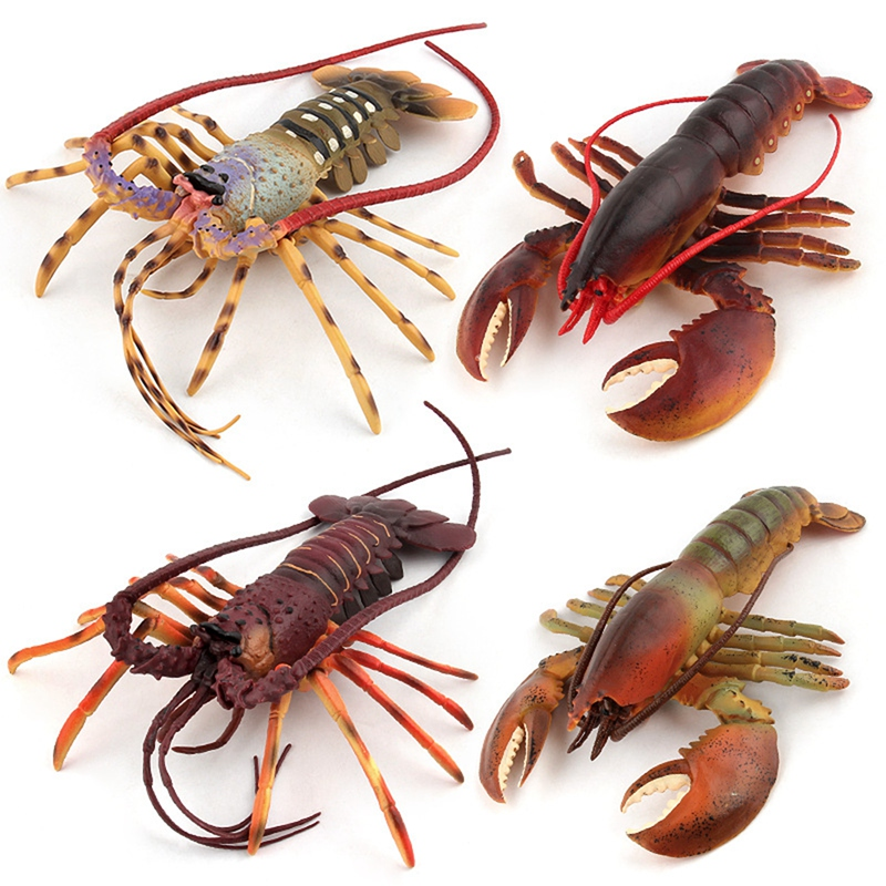 1X-Solido-Realista-Mundo-Submarino-Animales-Modelos-Realistas-De-Talla-Extr-U4Y7 miniatura 35