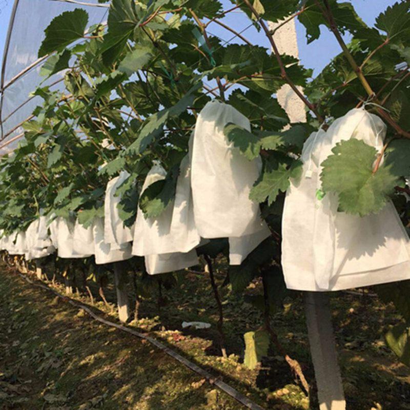 1X-100Pcs-Grape-Protection-Bags-For-Fruit-Vegetable-Grapes-Mesh-Bag-Against2D6 thumbnail 7