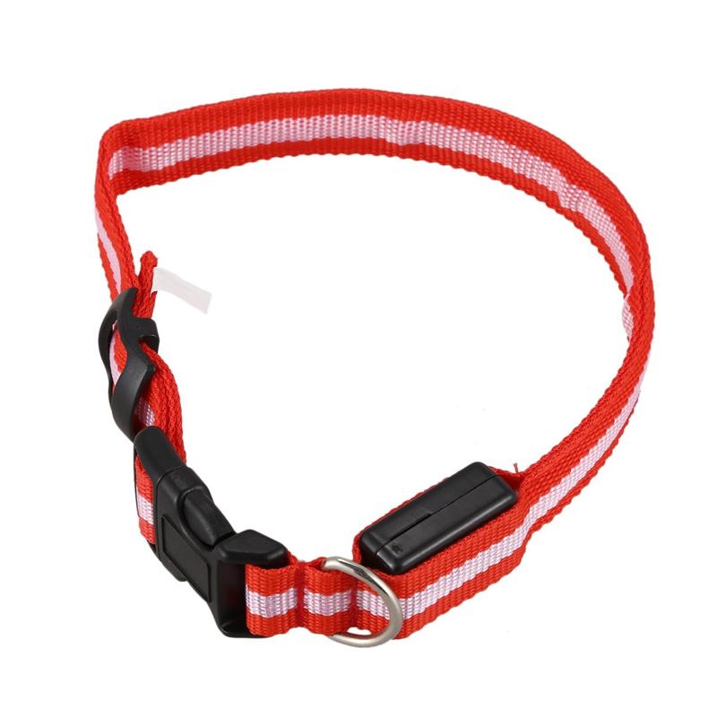 10X-Glow-LED-Cat-Dog-Pet-Collar-Flashing-Light-Up-Safety-Collar-Red-M-N9N6 thumbnail 3