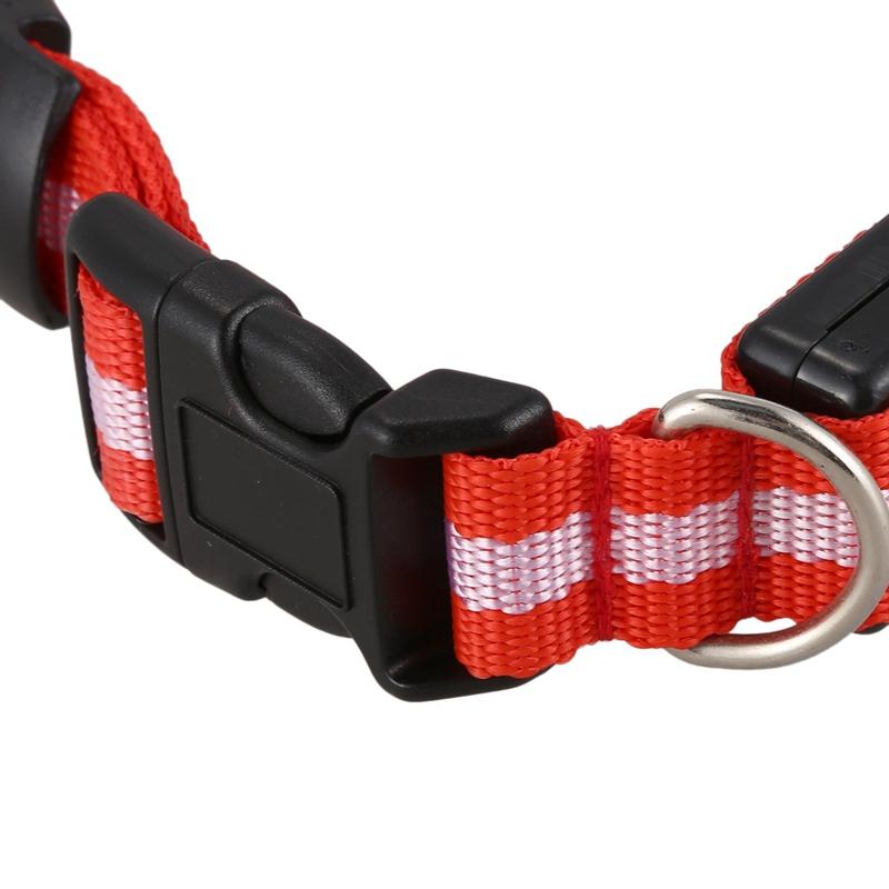 10X-Glow-LED-Cat-Dog-Pet-Collar-Flashing-Light-Up-Safety-Collar-Red-M-N9N6 thumbnail 4