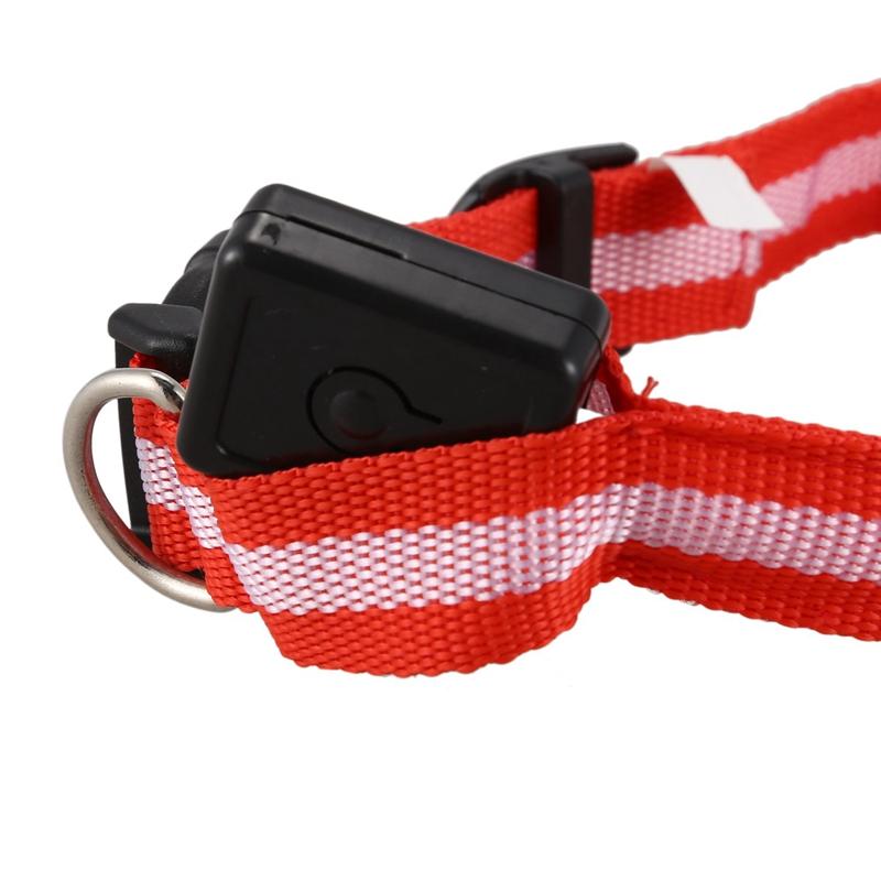 10X-Glow-LED-Cat-Dog-Pet-Collar-Flashing-Light-Up-Safety-Collar-Red-M-N9N6 thumbnail 5