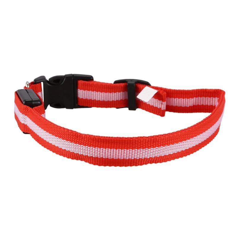 10X-Glow-LED-Cat-Dog-Pet-Collar-Flashing-Light-Up-Safety-Collar-Red-M-N9N6 thumbnail 6