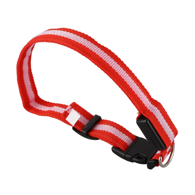 10X-Glow-LED-Cat-Dog-Pet-Collar-Flashing-Light-Up-Safety-Collar-Red-M-N9N6 thumbnail 7