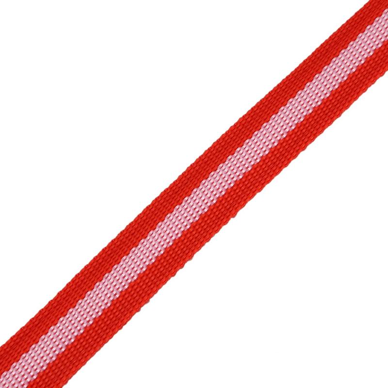 10X-Glow-LED-Cat-Dog-Pet-Collar-Flashing-Light-Up-Safety-Collar-Red-M-N9N6 thumbnail 9