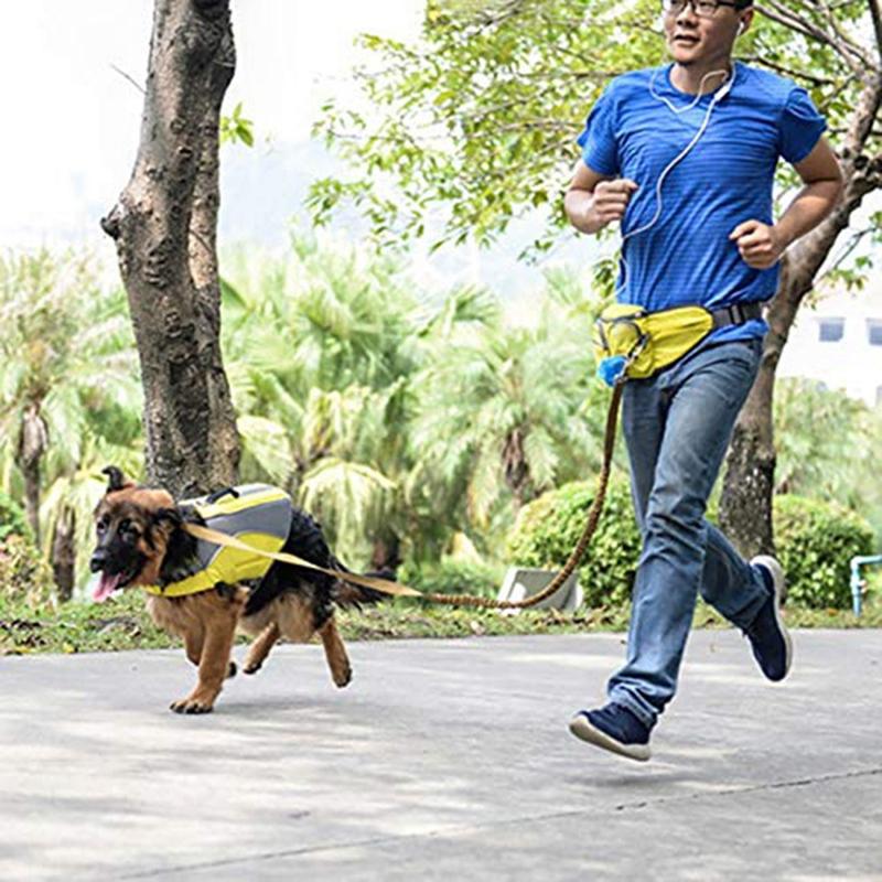 Indexbild 5 - Outdoor-Pet-Training-Pockets-Hochwertige-Atmungsaktive-Nylon-Snack-Packs-f-B8W9
