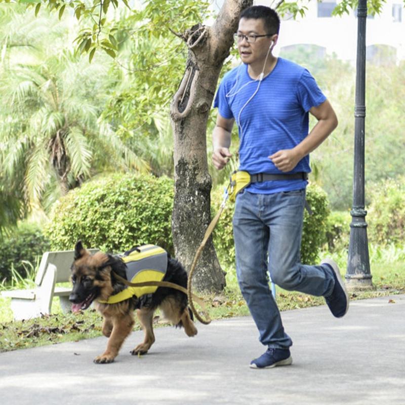 Indexbild 8 - Outdoor-Pet-Training-Pockets-Hochwertige-Atmungsaktive-Nylon-Snack-Packs-f-B8W9