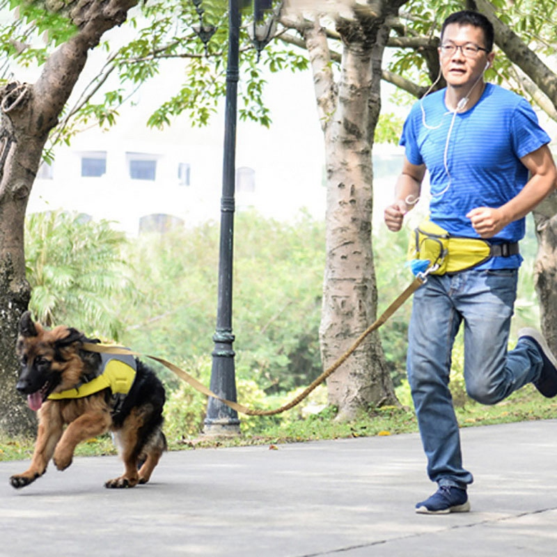 Indexbild 10 - Outdoor-Pet-Training-Pockets-Hochwertige-Atmungsaktive-Nylon-Snack-Packs-f-B8W9