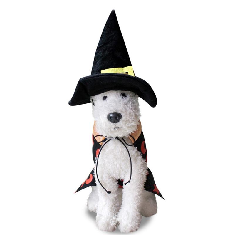 Animaux-Halloween-SorcieRe-Manteau-Chaud-Chien-Vetements-Vestes-Costume-V8H6 miniature 4