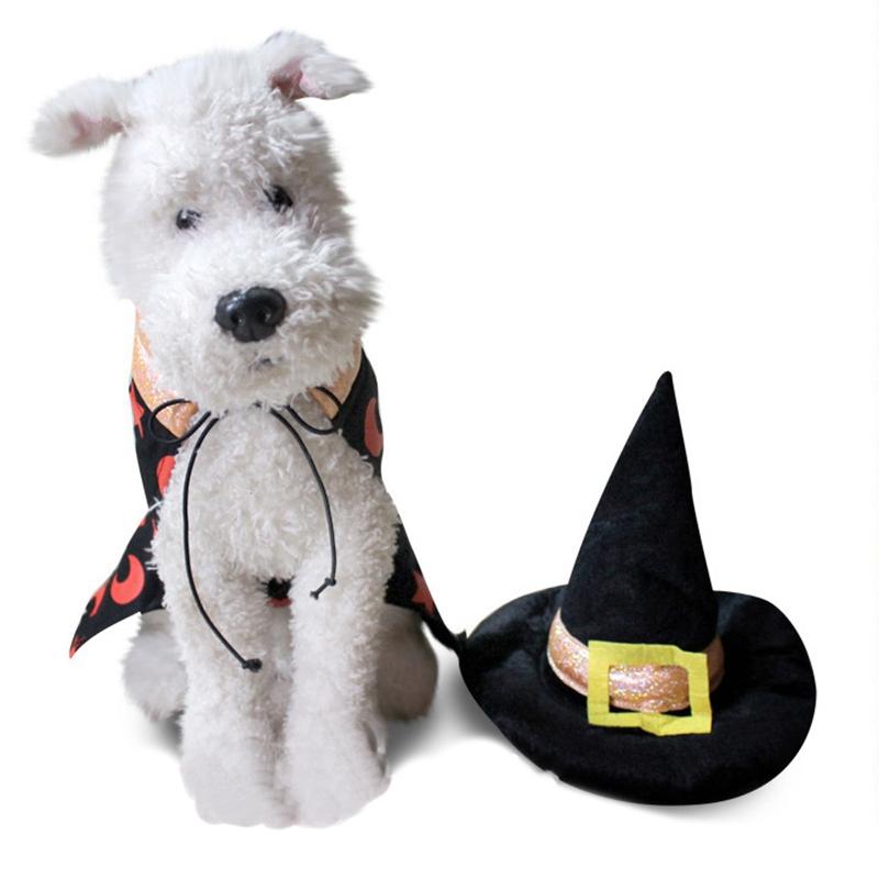 Animaux-Halloween-SorcieRe-Manteau-Chaud-Chien-Vetements-Vestes-Costume-V8H6 miniature 5
