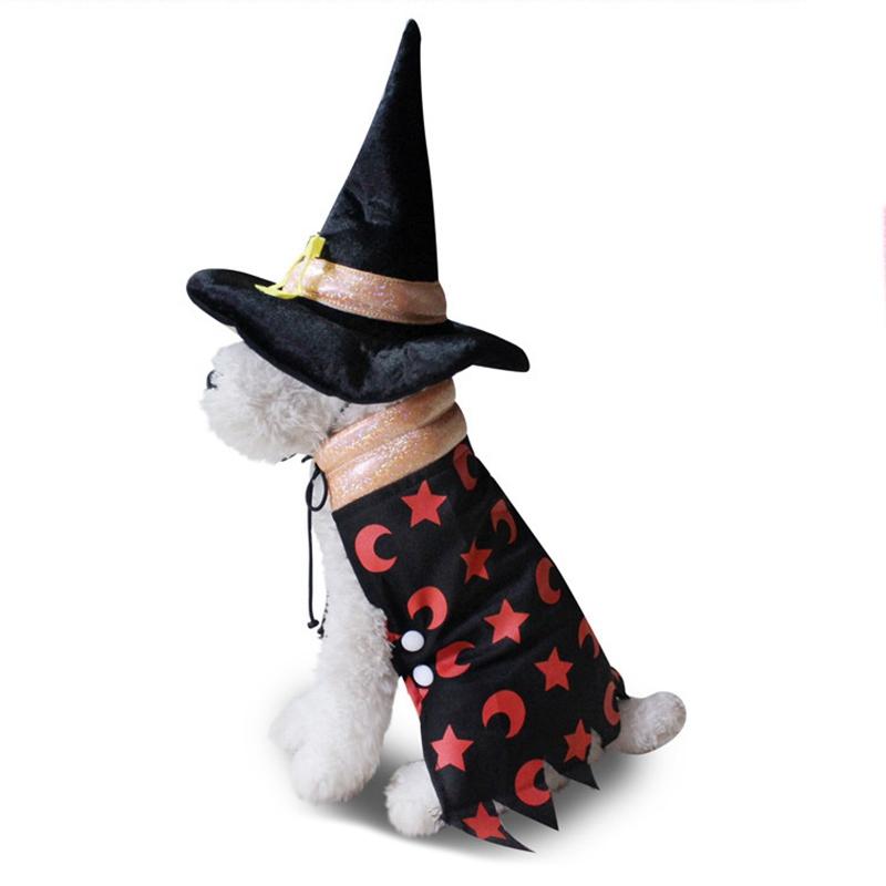 Animaux-Halloween-SorcieRe-Manteau-Chaud-Chien-Vetements-Vestes-Costume-V8H6 miniature 8