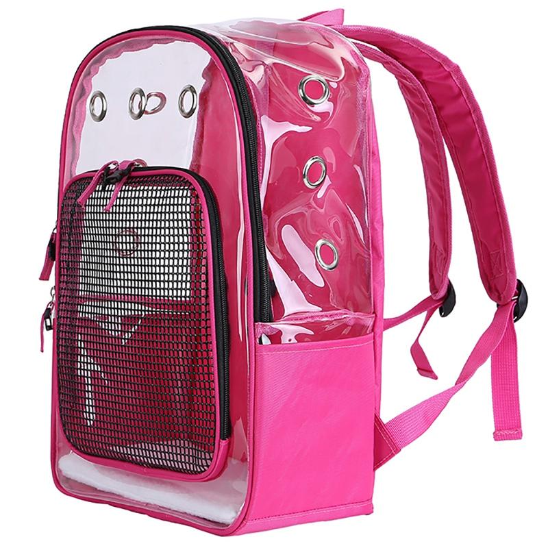 Pet-Clear-Cat-Backpack-Carrier-Respirant-Pliable-Pet-Backpack-Carrier-pour-Chiot miniature 15