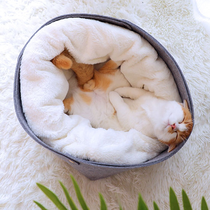 Cat-Basket-Pet-Dog-Bed-for-Cat-Warm-Bed-Dogs-Houses-for-Cats-Pets-Products-J1A8 thumbnail 3