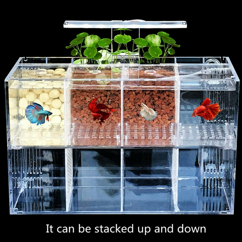 Aquarium-LED-ReServoir-de-Poissons-Acrylique-Betta-Set-Filtres-de-Pompe-a-E-B6Y8 miniature 4