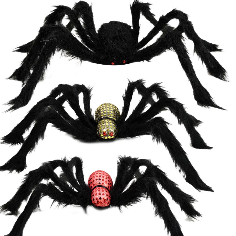 Insecte,Magie,Sorciere,Sorcellerie,Halloween,Horreur Araignée Tarentule Velue