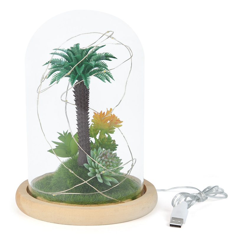 Cylinder Glass Wall Hanging Vase Bottle for Plant Flower Decorations A2C1