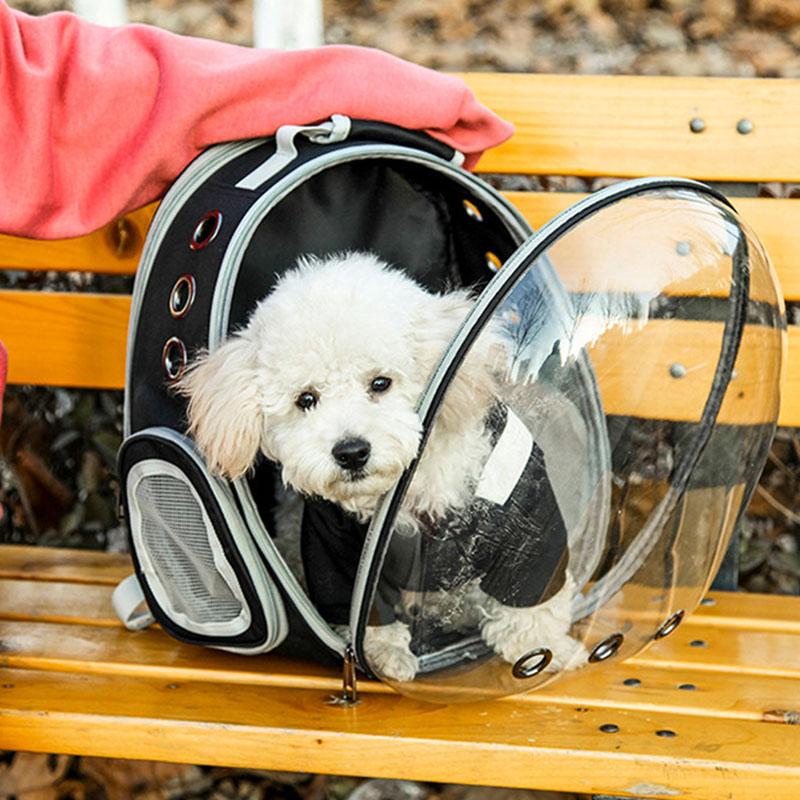 1X-Pet-Chat-Sac-a-Dos-Petit-Chien-Transportant-la-Cage-en-Plein-Air-Voyage-A1J2 miniature 12