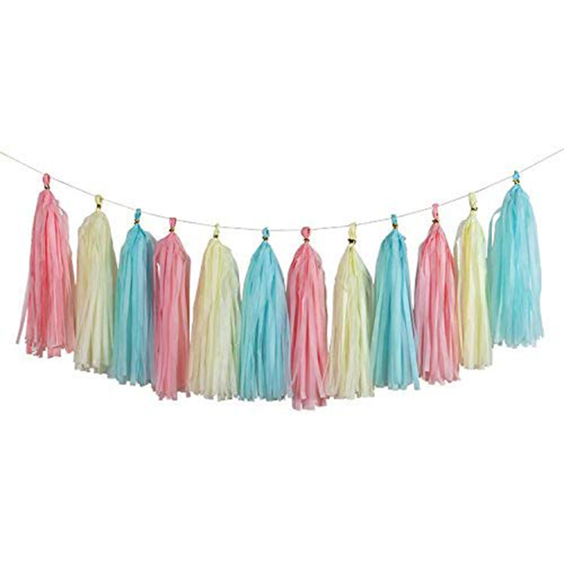 23Pcs-Tissue-Paper-Flowers-Pom-Poms-Party-Girl-Decorations-Tassel-Garland-for-We thumbnail 12