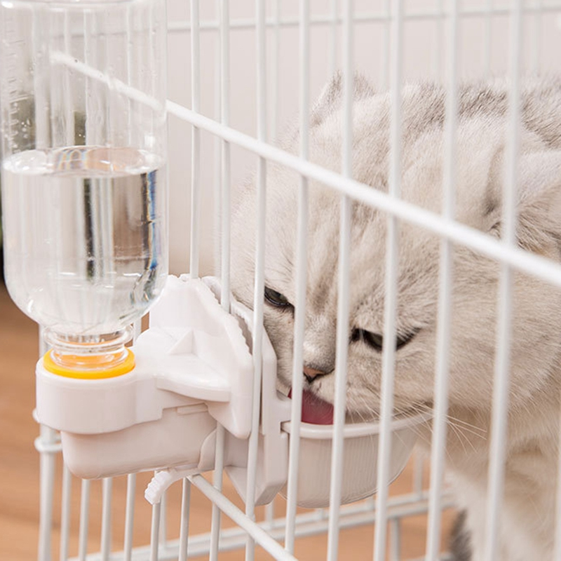 thumbnail 3 - Cat-Water-Dispenser-Pet-Water-Feeder-Installed-Water-Bowl-for-Cat-Dog-F6O4