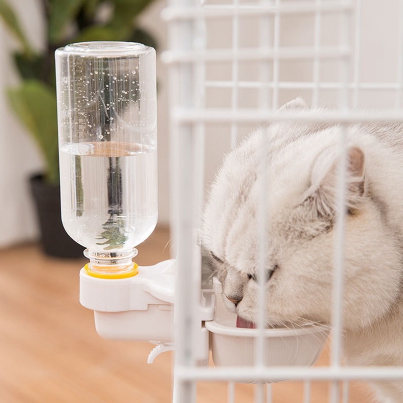 thumbnail 5 - Cat-Water-Dispenser-Pet-Water-Feeder-Installed-Water-Bowl-for-Cat-Dog-F6O4