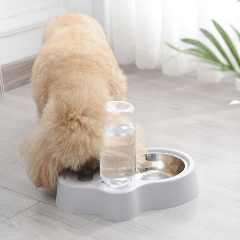 thumbnail 5 - Cat-Bowl-Dog-Water-Feeder-Bowl-Cat-Kitten-Bottle-Drinking-Fountain-Food-Pet-S9M3