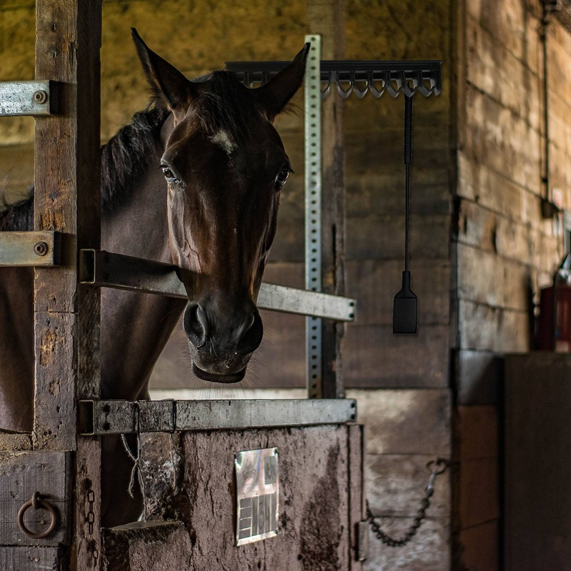 Equestrian ABS Horse Whip Holder Rack Holder-Flat Wall Mounted Rack Bracke E6M5