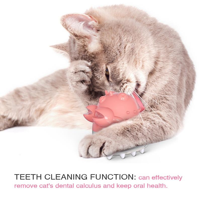 Indexbild 3 - KatzenzahnbüRste Katzenminze Spielzeug Zahnpflege NachfüLlbare Katzenminze inze