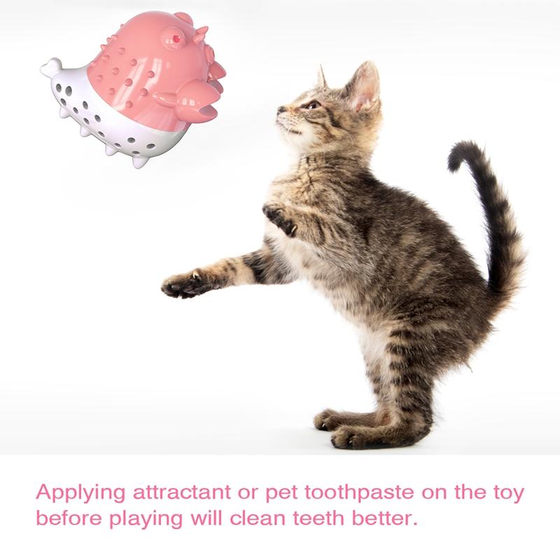 Indexbild 7 - KatzenzahnbüRste Katzenminze Spielzeug Zahnpflege NachfüLlbare Katzenminze inze