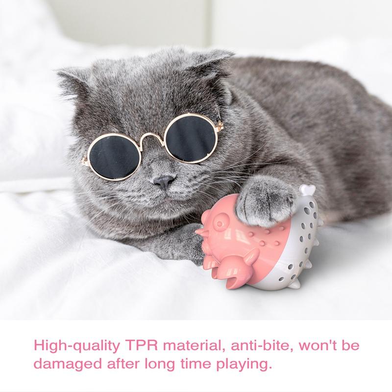 Indexbild 8 - KatzenzahnbüRste Katzenminze Spielzeug Zahnpflege NachfüLlbare Katzenminze inze