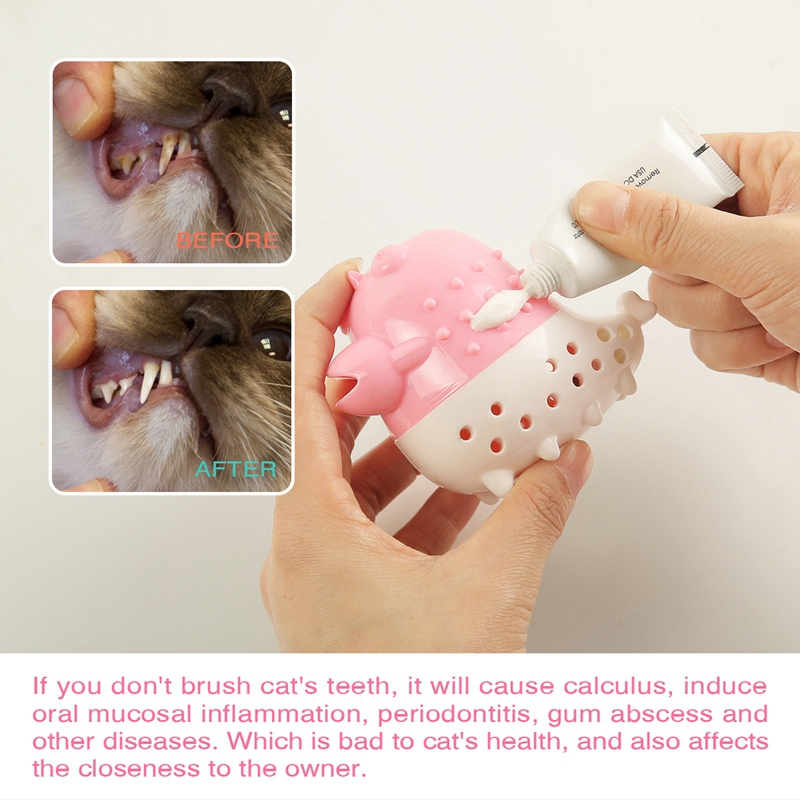 Indexbild 9 - KatzenzahnbüRste Katzenminze Spielzeug Zahnpflege NachfüLlbare Katzenminze inze