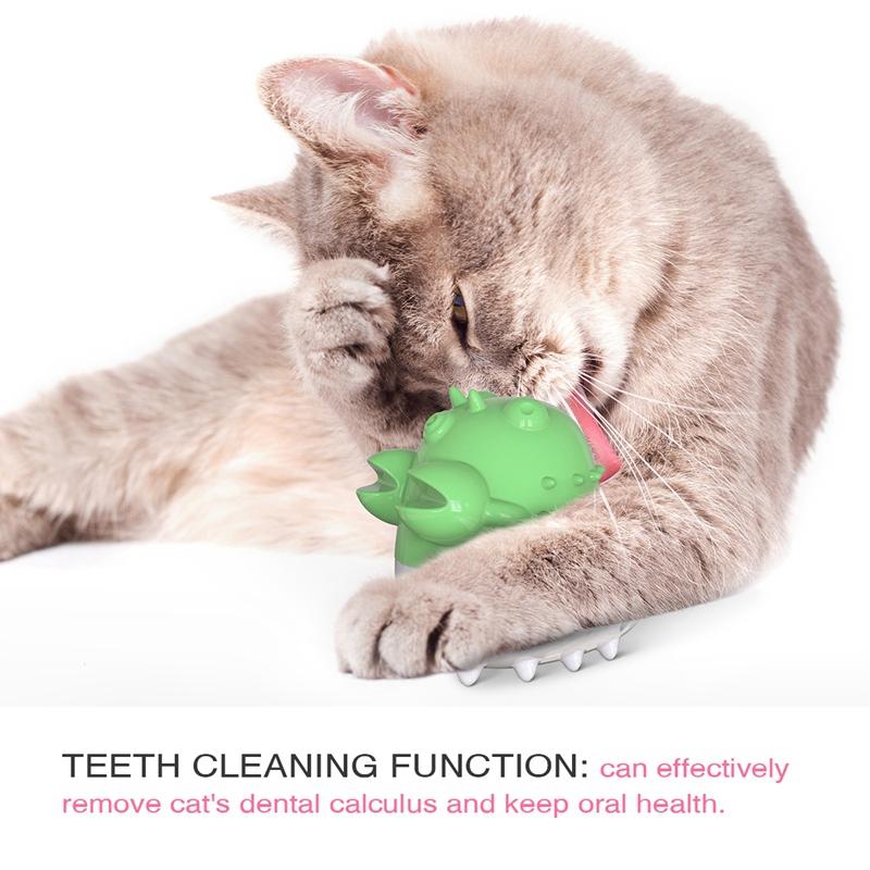 Indexbild 14 - KatzenzahnbüRste Katzenminze Spielzeug Zahnpflege NachfüLlbare Katzenminze inze