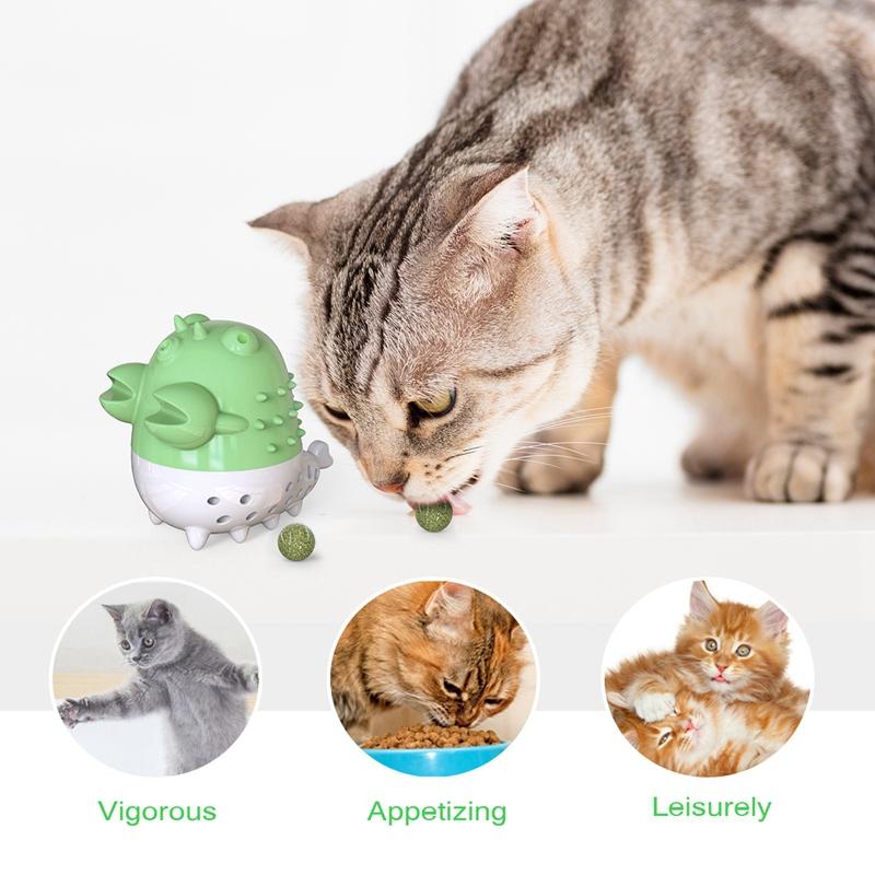 Indexbild 15 - KatzenzahnbüRste Katzenminze Spielzeug Zahnpflege NachfüLlbare Katzenminze inze