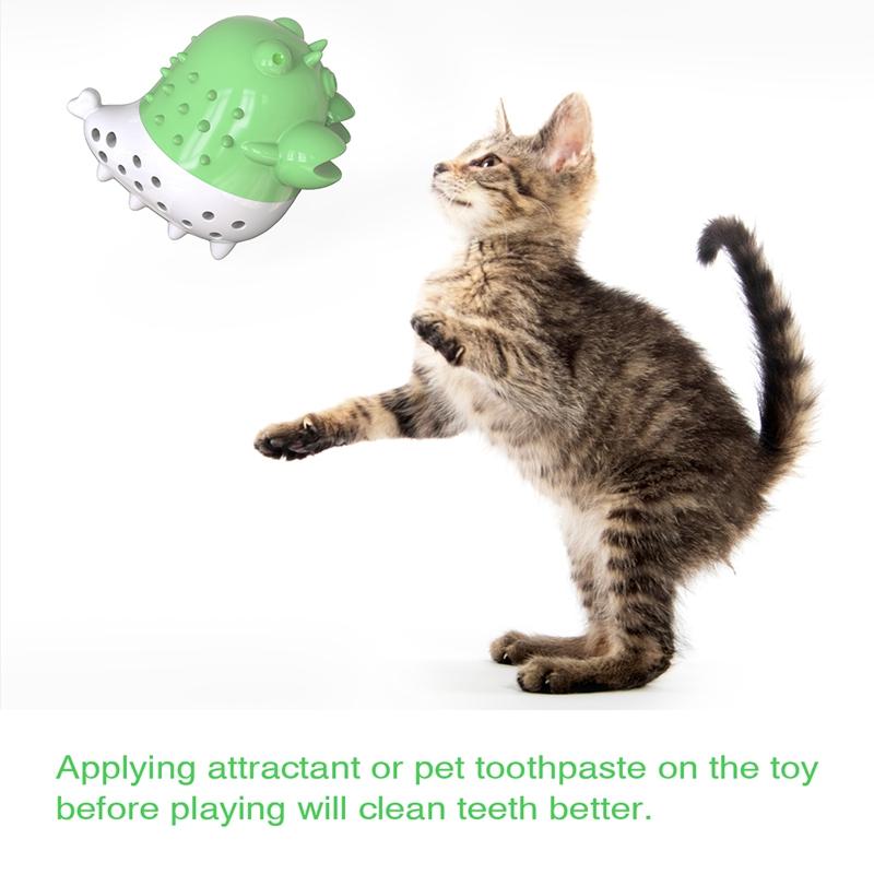 Indexbild 17 - KatzenzahnbüRste Katzenminze Spielzeug Zahnpflege NachfüLlbare Katzenminze inze