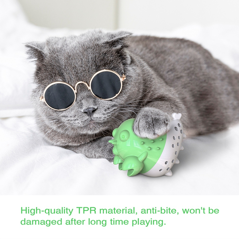 Indexbild 18 - KatzenzahnbüRste Katzenminze Spielzeug Zahnpflege NachfüLlbare Katzenminze inze