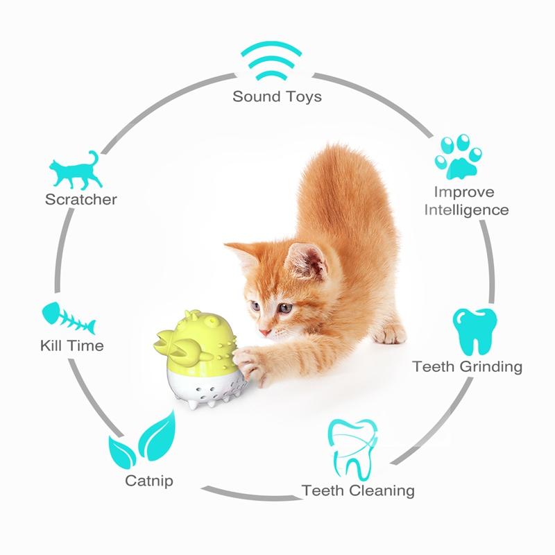 Indexbild 23 - KatzenzahnbüRste Katzenminze Spielzeug Zahnpflege NachfüLlbare Katzenminze inze