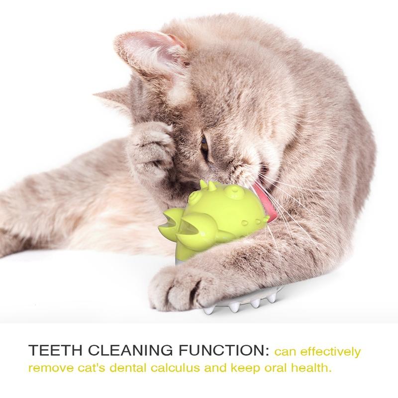 Indexbild 24 - KatzenzahnbüRste Katzenminze Spielzeug Zahnpflege NachfüLlbare Katzenminze inze