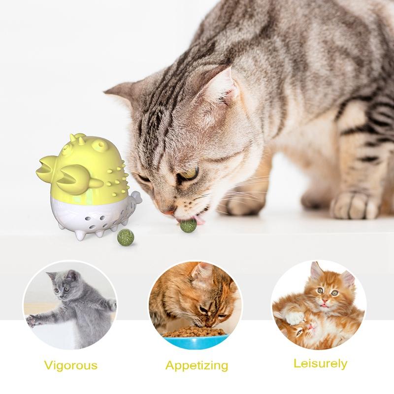 Indexbild 25 - KatzenzahnbüRste Katzenminze Spielzeug Zahnpflege NachfüLlbare Katzenminze inze