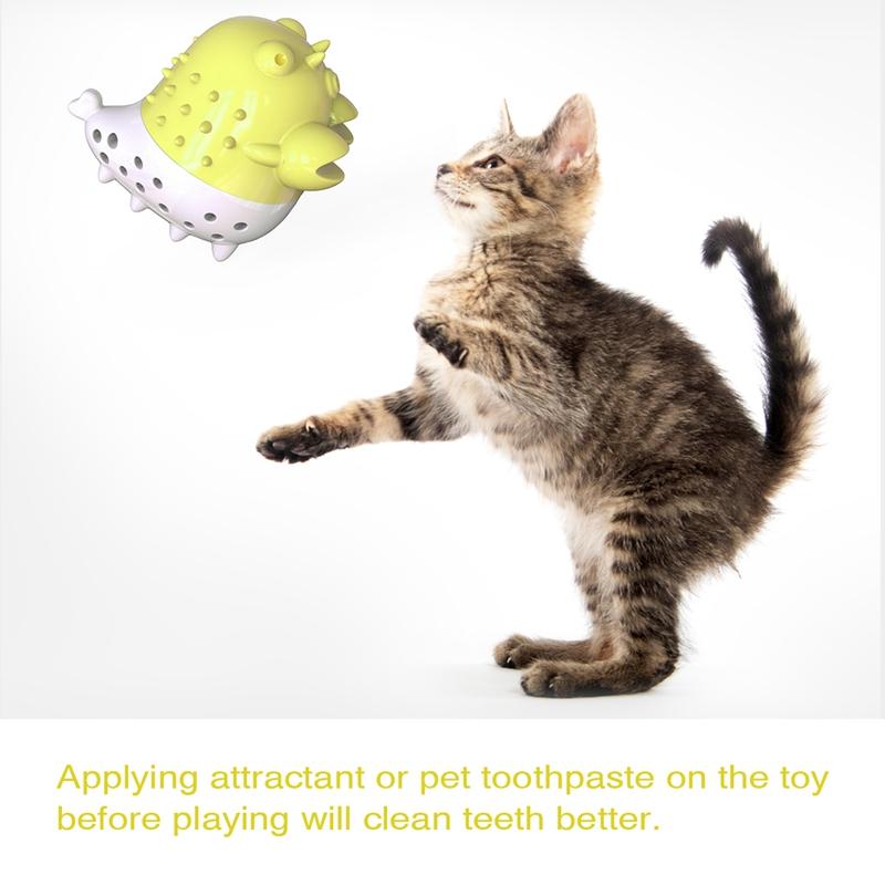 Indexbild 27 - KatzenzahnbüRste Katzenminze Spielzeug Zahnpflege NachfüLlbare Katzenminze inze