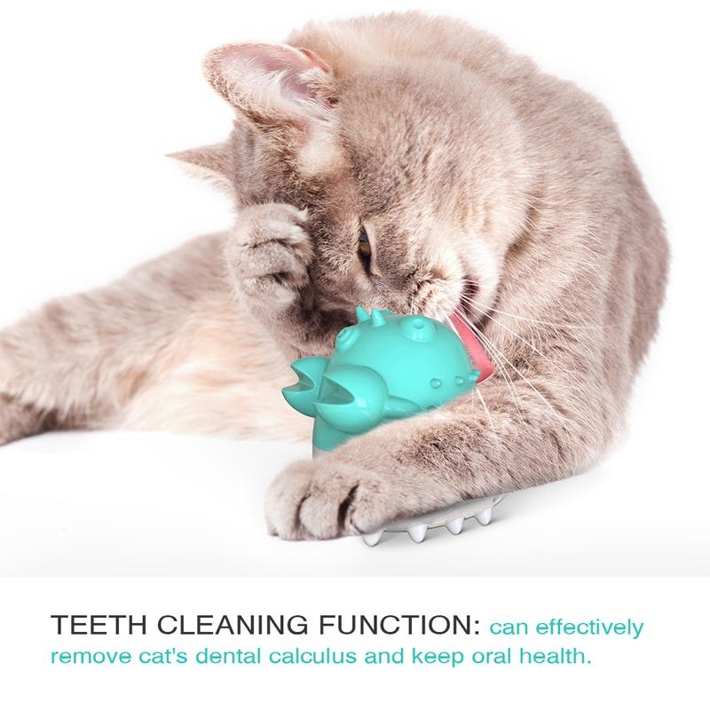 Indexbild 34 - KatzenzahnbüRste Katzenminze Spielzeug Zahnpflege NachfüLlbare Katzenminze inze