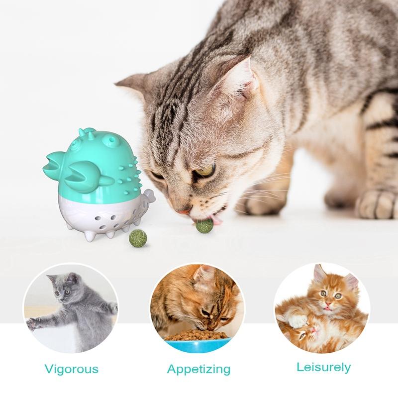 Indexbild 35 - KatzenzahnbüRste Katzenminze Spielzeug Zahnpflege NachfüLlbare Katzenminze inze