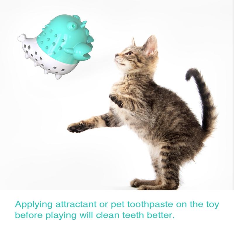 Indexbild 37 - KatzenzahnbüRste Katzenminze Spielzeug Zahnpflege NachfüLlbare Katzenminze inze