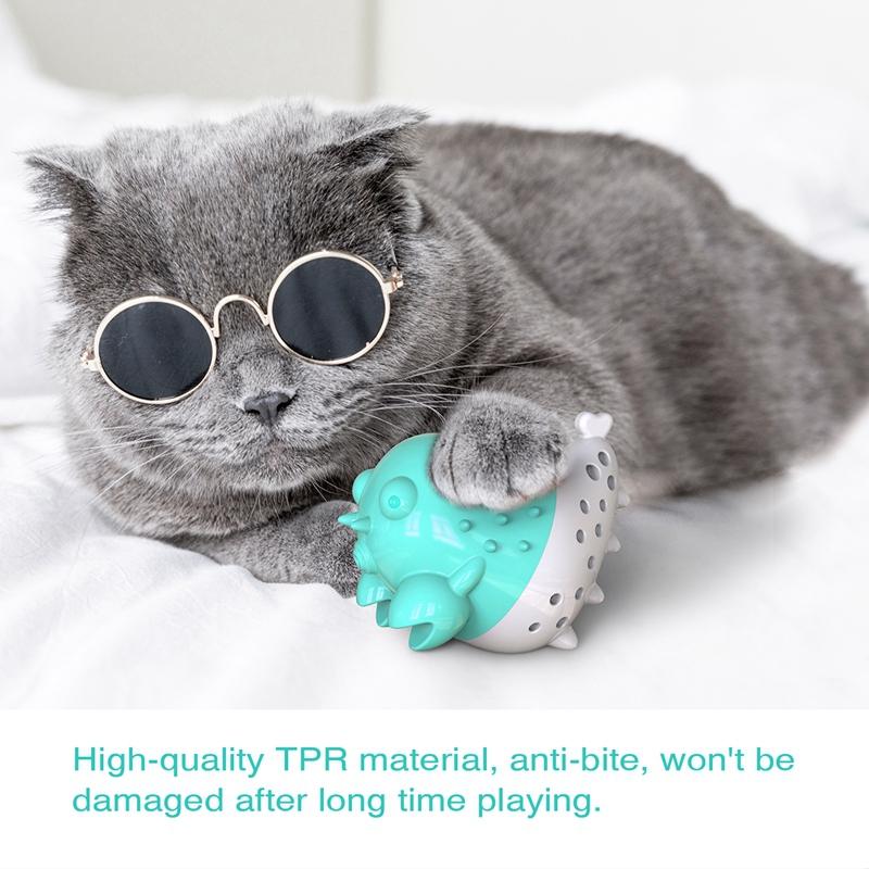 Indexbild 38 - KatzenzahnbüRste Katzenminze Spielzeug Zahnpflege NachfüLlbare Katzenminze inze