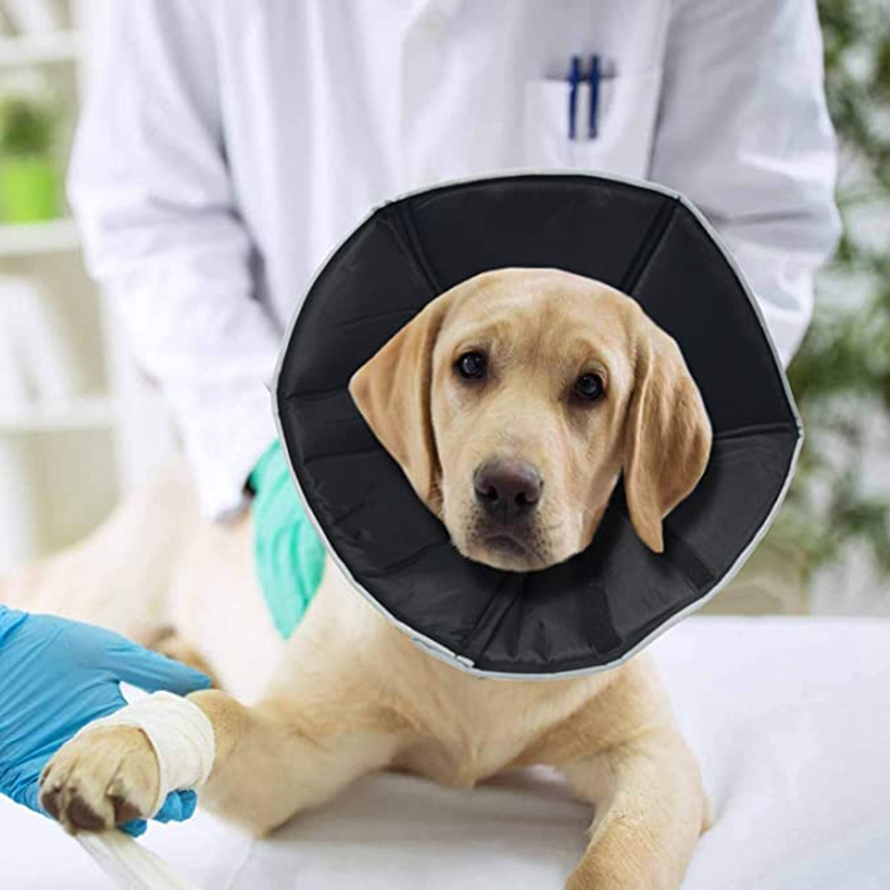 thumbnail 11 - Pet-Recovery-Collar-for-Surgery-with-Elastic-Loops-Protective-Collar-for-Wo-A9L2